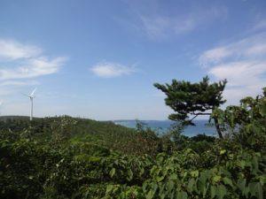 夏04おしごと体験国有林s