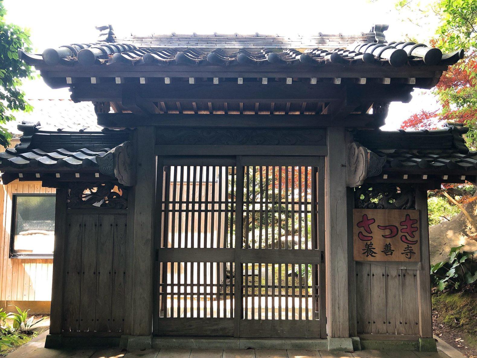 養善寺(さつき群)