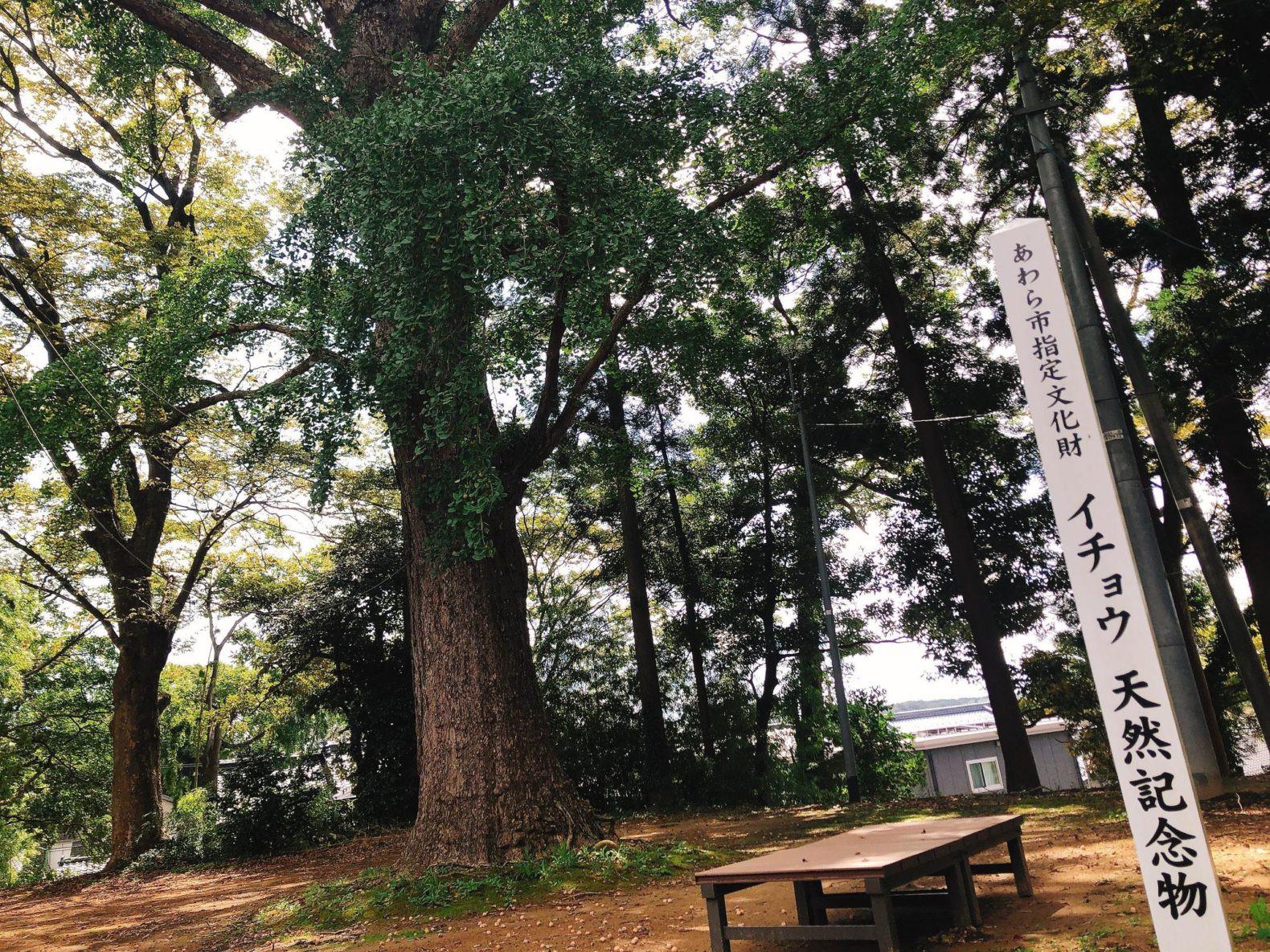 天王山 案楽寺
